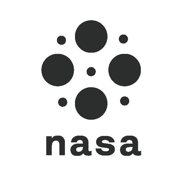 NASA logo exploration-19