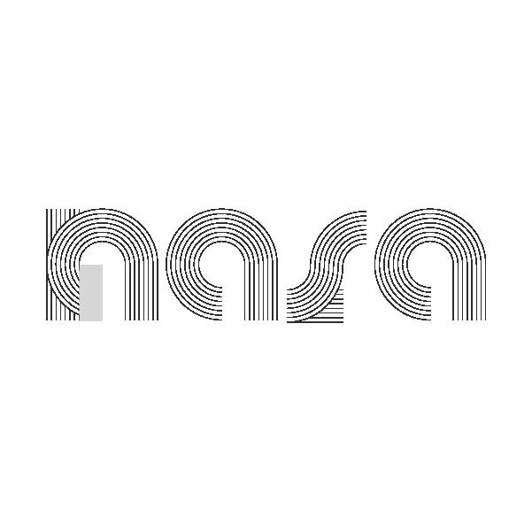 NASA logo exploration-20